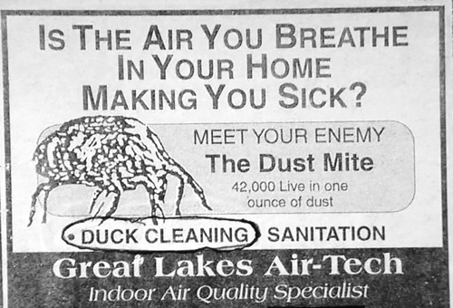duckcleaning